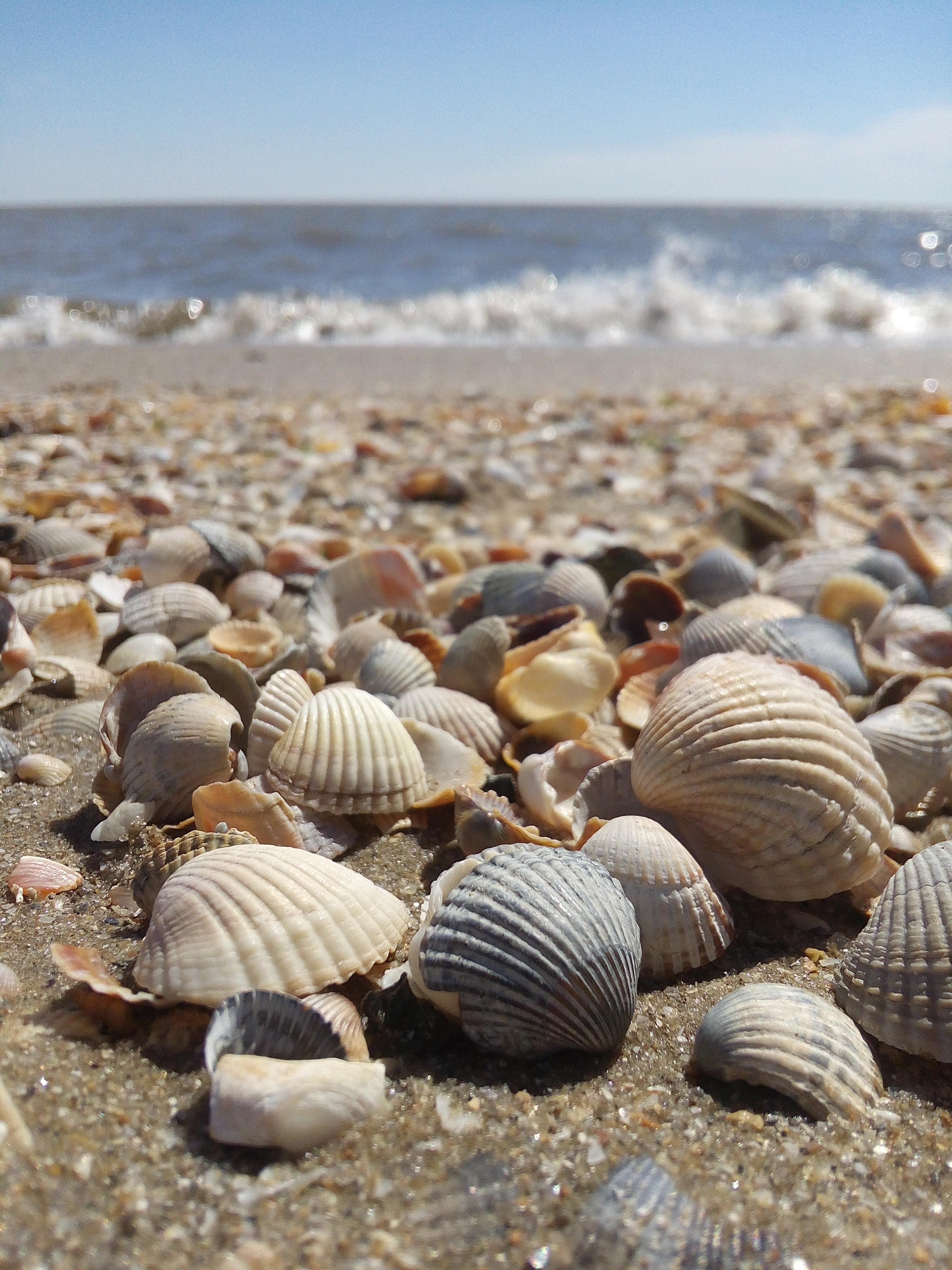 Смотреть картинки про море давно пользуемся