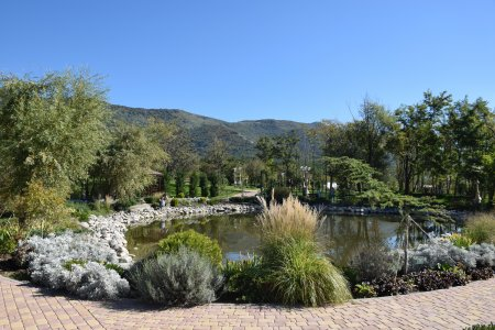 Парковый пруд